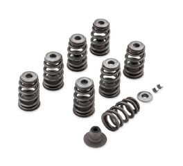 Harley-Davidson® Screamin' Eagle Performance Valve Spring Kit - Milwaukee-Eight Powertrain 18100080
