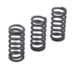 Harley-Davidson® Milwaukee-Eight Engine Clutch Springs - 1200N 37000288