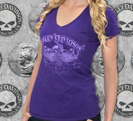 Harley-Davidson® Women's Shade Shift Winged B&S Tee Top T-Shirt, RK Stratman Inc. R002167
