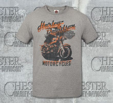Harley-Davidson® Men's Grey Visions Beefy Tee R002440