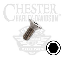 Buell® Rear Brake Rotor Screw A1025.5CZ