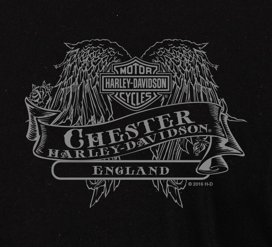 de44691008c7 Harley-Davidson® Women's Fleur De Lis Long Sleeve V-Neck Tee R002643 ...