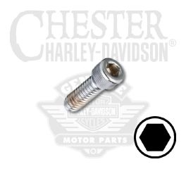 "Harley-Davidson® Chrome 1/4""-20 X 3/4"" UNC Hex Socket Head Screw 94312-91T"