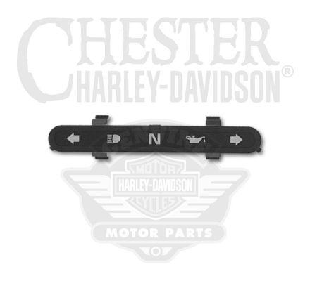 Harley-Davidson® Indicator Lamp Bezel 69538-04A