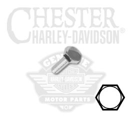 "Harley-Davidson® 1/4""-20 x 7/8"" UNC Hex Head Screw 94153-91T"
