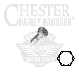 "Harley-Davidson® 1/4""-28 x 5/8"" UNF Hex Head Screw 94171-91T"