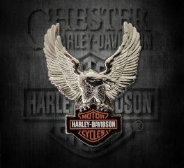 Harley-Davidson® Silver Upwing Eagle Bar & Shield® Pin, Global Products, Inc. P328064