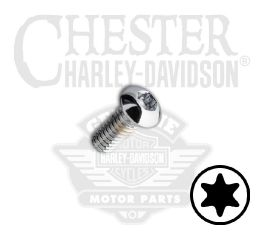 "1/4""-20 x 5/8"" UNC Torx Button Head Chrome Screw"