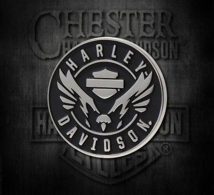 Harley-Davidson® Velocity Eagle 2D Die Cast Pin P326062