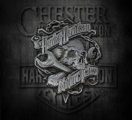 Harley-Davidson® Grim Skull 3D Die Cast Struck Pin, Global Products, Inc. P341123