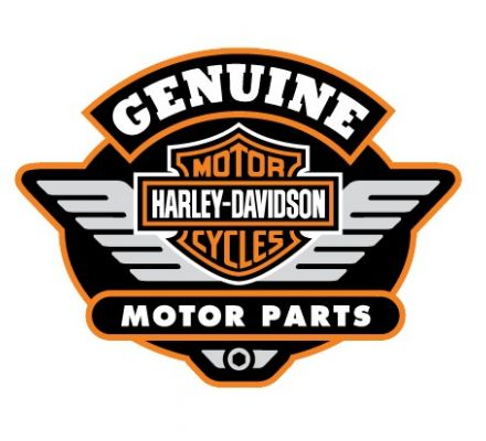 Harley-Davidson® No picture 99494-16IT