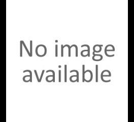 Harley-Davidson® Horn Bracket 69115-88A